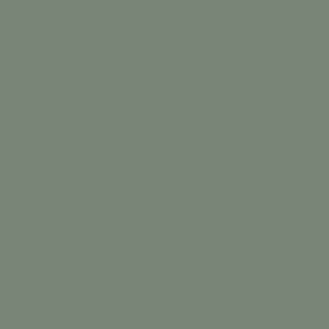 couleur-eucalyptus.jpg
