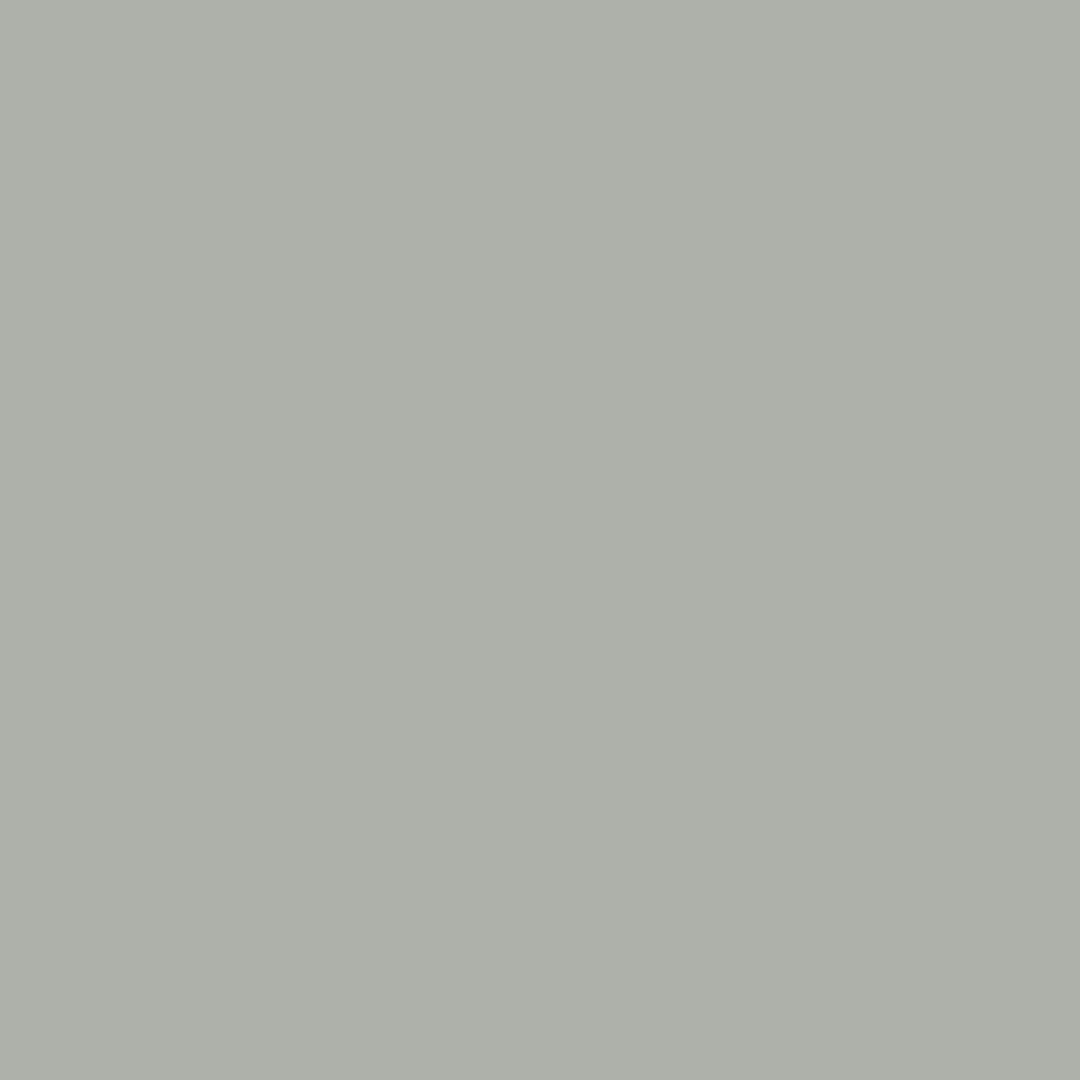 couleur-gris-tourterelle