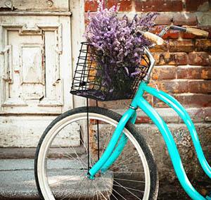 Ispirazione decorazione fiori bici blu
